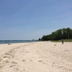 15 Goose Neck beach IMG_0531